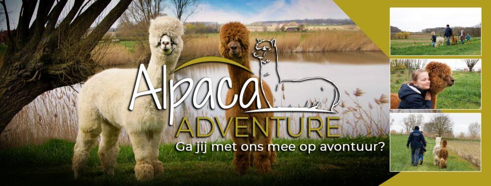 Alpaca Adventure Wandelingen